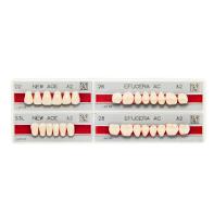 Acrylic Artificial Teeth