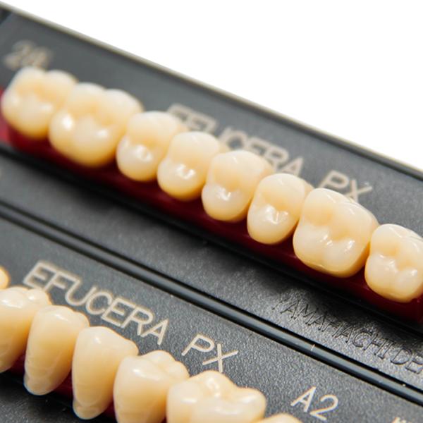 Composite Artificial Teeth